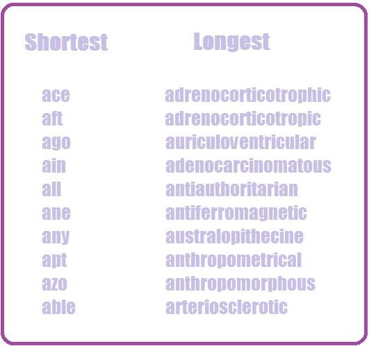 Romantic adjectives